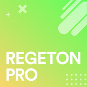 Regeton Pro de Various Artists