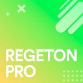 Regeton Pro von Various Artists