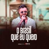 O Brasil Que Eu Quero de Vinícius Terra