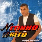 Agora ou Nunca Mais (Cover) by Netinho Brito