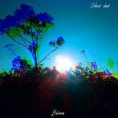 Believer (Cover) von Ghost duet