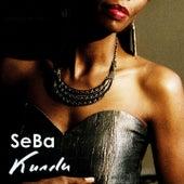 Kundu de Seba