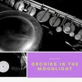 Orchids In the Moonlight von Juan D'Arienzo and his Orchestra, Horatio Petorossi e la sua Orchestra Argentina, Bianco Bachicha Tango-Orchester, Adolfo Carabelli