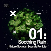 Soothing Rain by Nature Sounds (1)