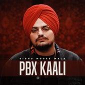 Pbx Kaali by Sidhu Moose Wala