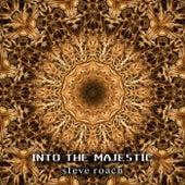 Into the Majestic von Steve Roach