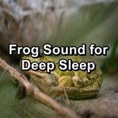 Frog Sound for Deep Sleep de Musica Relajante