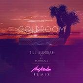 Till Sunrise (Remix) de GoldRoom