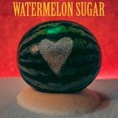 Watermelon Sugar de Living Room For Small