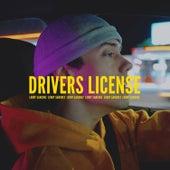 Drivers License de Leroy Sanchez