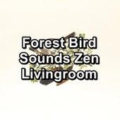 Forest Bird Sounds Zen Livingroom by Bird Sounds