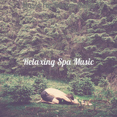 Music for Steam Baths by Relaxing Spa Music
