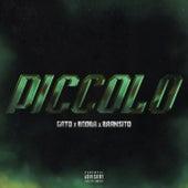 Piccolo (feat. Booba & Bramsito) de Gato