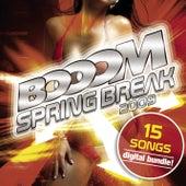 Booom Springbreak 15 Songs von Various Artists