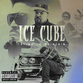 Trying To Maintain by Ice Cube