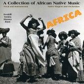 African Native Music von Various Artists