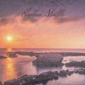 Harlem Shuffle de Various Artists