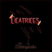 cicatrices by Los  Distinguidos