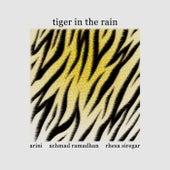 Tiger In The Rain de Rhesa Siregar