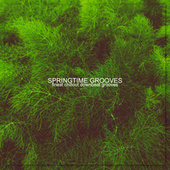Springtime Grooves by Various Artists