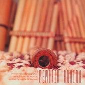 Memoria Andina by Tierra Negra
