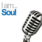 I Am Soul von Various Artists
