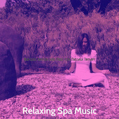 High-class Background Music for Massage Therapy by Relaxing Spa Music
