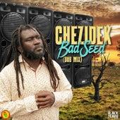Bad Seed (Dub Mix) de Chezidek