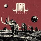 Caravan von Acid Mammoth