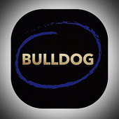 Bulldog de The Papers