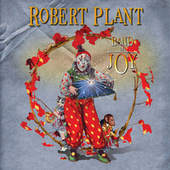 Band Of Joy de Robert Plant