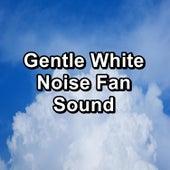 Gentle White Noise Fan Sound by Fan Sounds