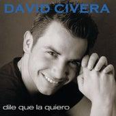 Dile Que La Quiero de David Civera
