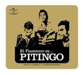 Flamenco es... Pitingo de Pitingo