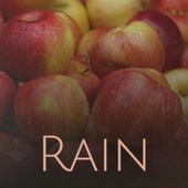 Rain von Various Artists