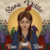 Rare Bird by Sara Petite