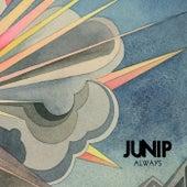 Always de Junip