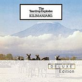 Kilimanjaro by The Teardrop Explodes