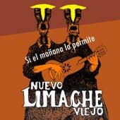 Si el Mañana Lo Permite (Radio Edit) by Nuevo Limache Viejo
