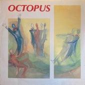 Octopus de Octopus