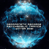 Geomagnetic Records Psychedelic Trance Winter 2021 de Dr. Spook
