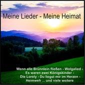 Meine Lieder - Meine Heimat by Various Artists