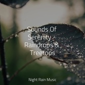 Sounds Of Serenity - Raindrops & Treetops by Calming Sounds