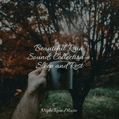 Beautiful Rain Sounds Collection - Sleep and Rest de Water Sound Natural White Noise