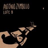 Lote B de António Zambujo
