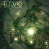 Liquid Tensity de Melange