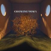 Growing Down de Gabeo