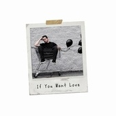 If You Want Love de Tylerhateslife