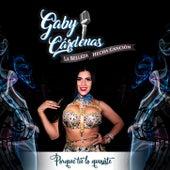 Gaby Cárdenas La Belleza Hecha Canción Porque Tú Lo Quisiste de Gaby Cardenas