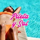 Pileta y Sol by Various Artists